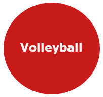 Logo Volleyball